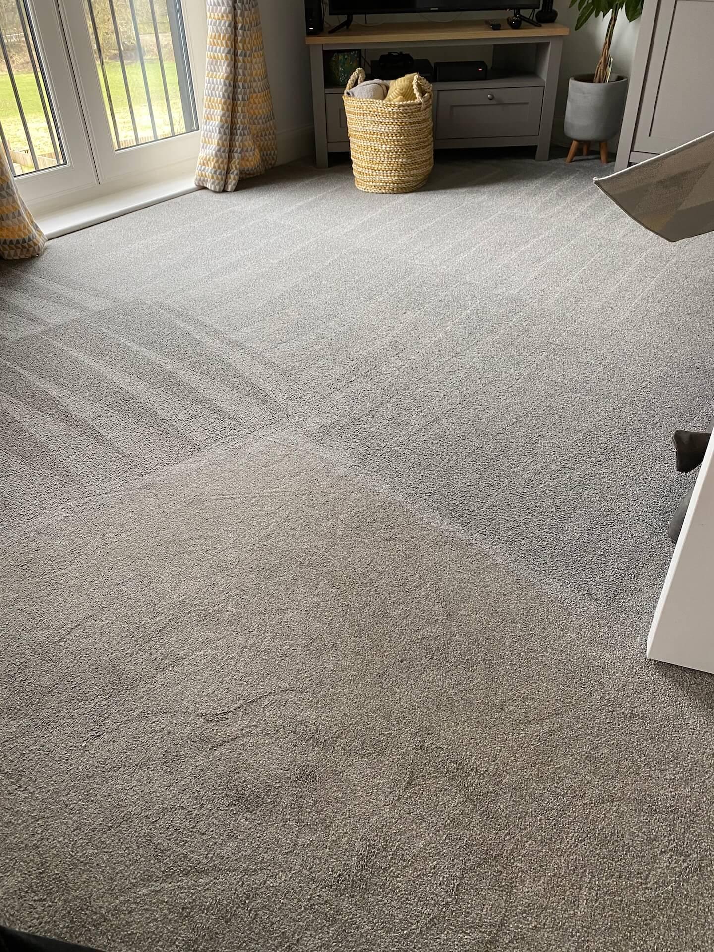 Carpet cleaning comparison shot