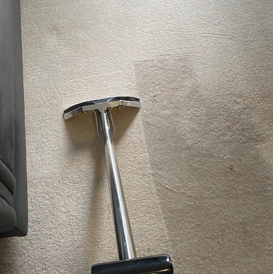 Rug Carpet Cleaning